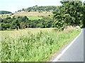 NZ1100 : Fields to the River Swale by Glyn Drury