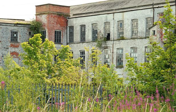 Former Barbour's Mill Hilden (3)