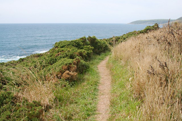 The Coast Path East of Butcher's Cove