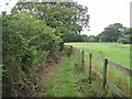SJ3378 : View of Footpath north of Willaston by David Quinn