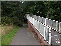 SZ0895 : Redhill Common, footbridge by Mike Faherty
