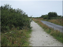 SW9560 : The Goss Moor Trail by Rod Allday
