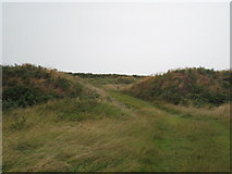 SW9462 : The entrance through the outer ring of Castle An Dinas hill fort by Rod Allday