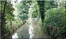 TL5646 : River Granta looking downstream towards the High Street road bridge by Archie Ruggles-Brise