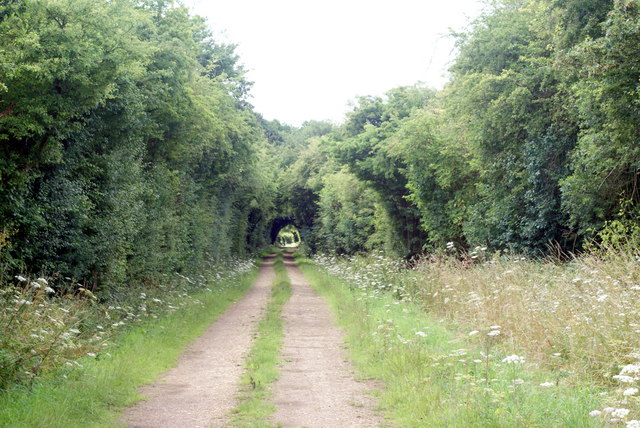 Trackbed of the Meon Valley Railway, Chawton, Hampshire