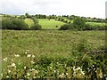 G8857 : Gubnacreeny Townland by Kenneth  Allen