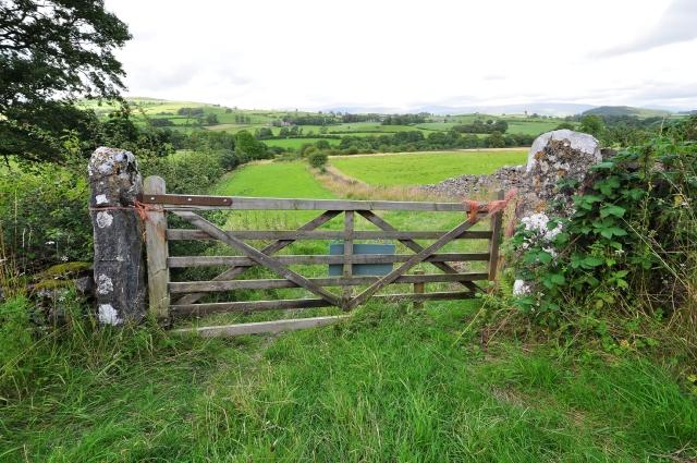 Farm gate and landscape