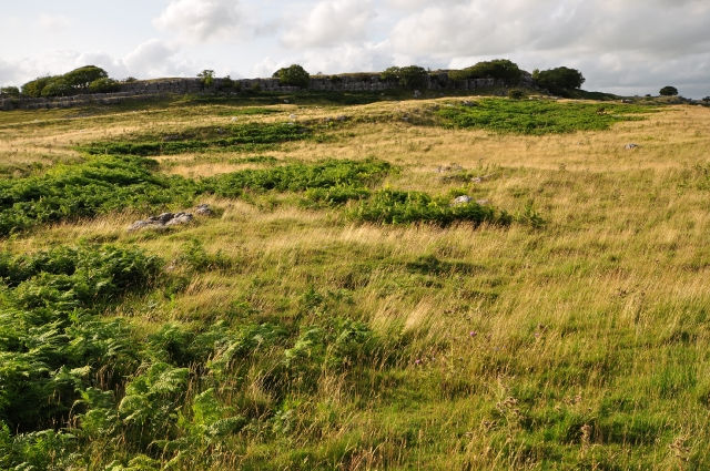 The edge of Newbiggin Crags from Whin Yeats