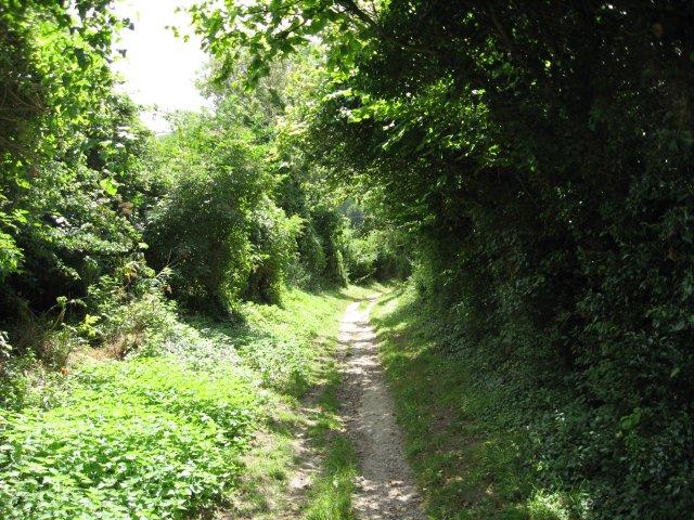 Green lane to Stourpaine