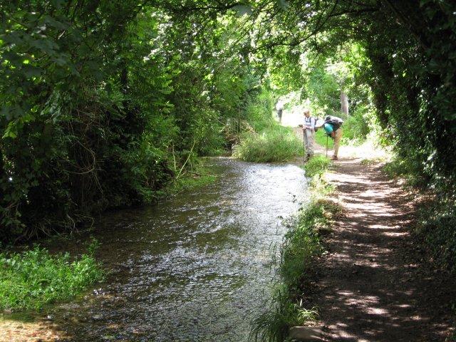 River Iwerne