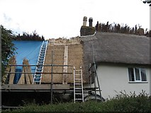 ST8609 : Thatching in progress by John Palmer