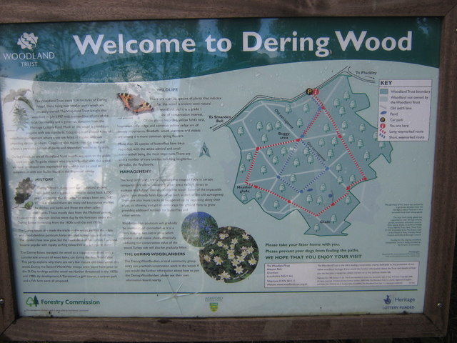 Dering Wood Information Board by David Anstiss