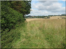 TQ9144 : Footpath beside hedge to Honey Farm by David Anstiss