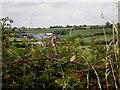 SE7759 : County Boundary near Bugthorpe by Dr Patty McAlpin
