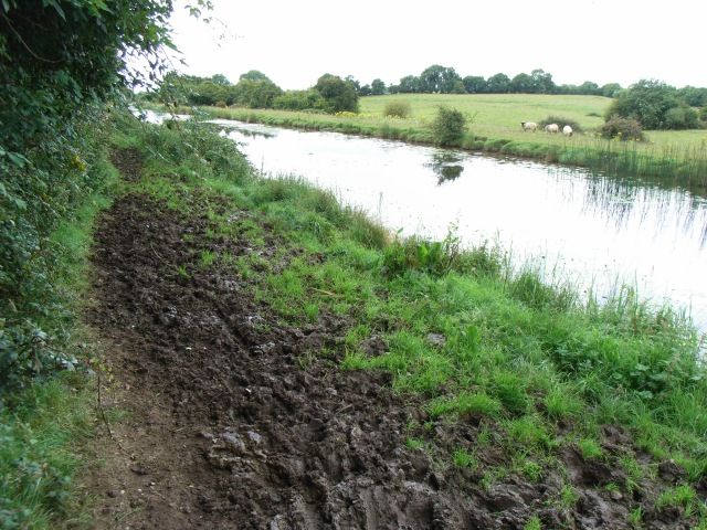 A right royal mess of a towpath on the Royal Canal near Enfield, Co. Meath