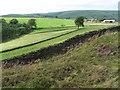 SJ9978 : From Taxal Moor towards Taxal Edge by Chris Wimbush