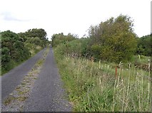 G7656 : Road at Mullanyduff by Kenneth  Allen