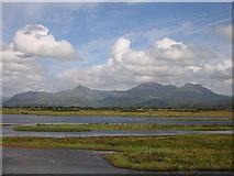 SH5738 : Saltmarsh in the Glaslyn estuary by Rudi Winter