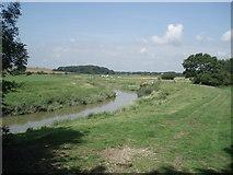 TQ1913 : River Adur near Stretham Manor by Paul Gillett
