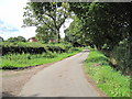 SJ4072 : Minor Cul-de-Sac Road by David Quinn