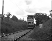SK3455 : Crich Tramway Museum by Dr Neil Clifton