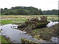 SU4807 : Wreck in Bunny Meadows by Richard Dorrell