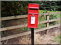 TM3961 : Sternfield Street Postbox by Geographer
