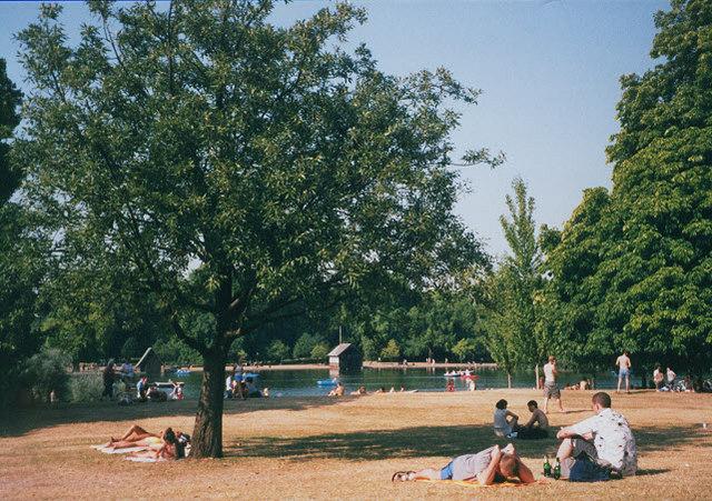 Hyde Park in a heatwave