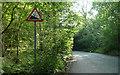 TQ1149 : White Down Road - Steep Hill 18% by Adam Morse