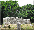 M1249 : Graveyard and ruined chapel on Inchagoill by C Michael Hogan