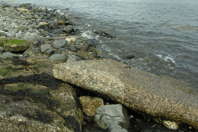 Remains of sea defence, below the A1 north of Ballygalley