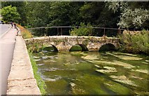 SP1106 : Old footbridge over the River Colne in Bibury by Steve Daniels