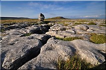SD7176 : Limestone boulder and Whernside by Mike Green