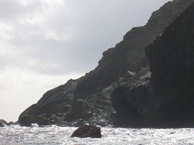 Foot of a rockfall, Soay