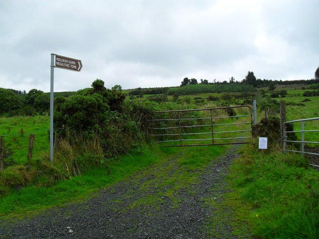 Lane to Mullyash Cairn