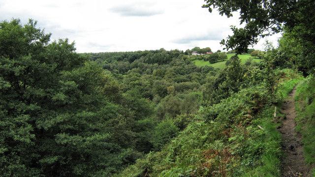 View across Consall Nature Park