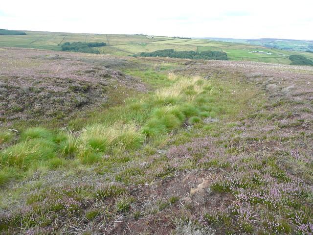 Moorland stream, Higher House Moor, Mytholmroyd