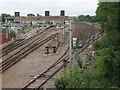 TL3707 : Broxbourne sidings by Stephen Craven