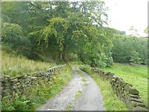 SD9922 : Lane to Higher House, Mytholmroyd by Humphrey Bolton