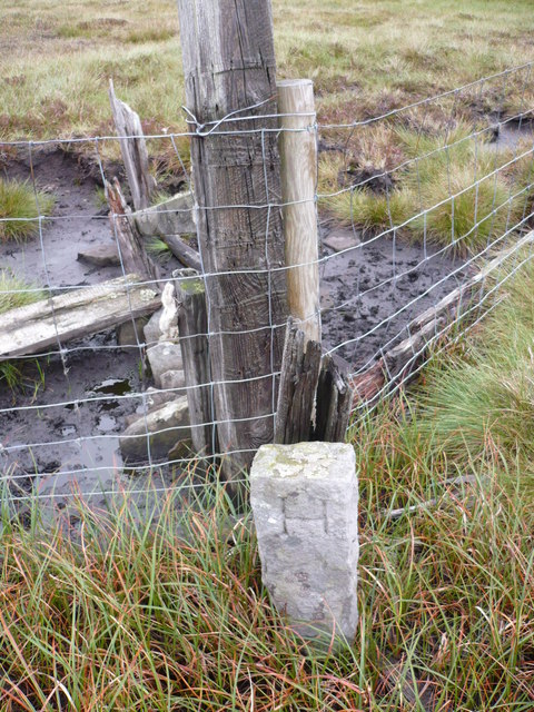 Boundary Stone on fence line on Yad Moss