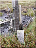 NY7837 : Boundary Stone on fence line on Yad Moss by Phil Catterall