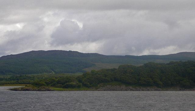 Wooded coastline near Kilchamaig
