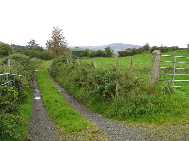Lane, Eskeradooey by Kenneth  Allen