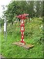 NS4263 : Millennium milepost by Richard Webb
