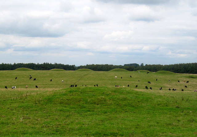 Bronze Age Barrows