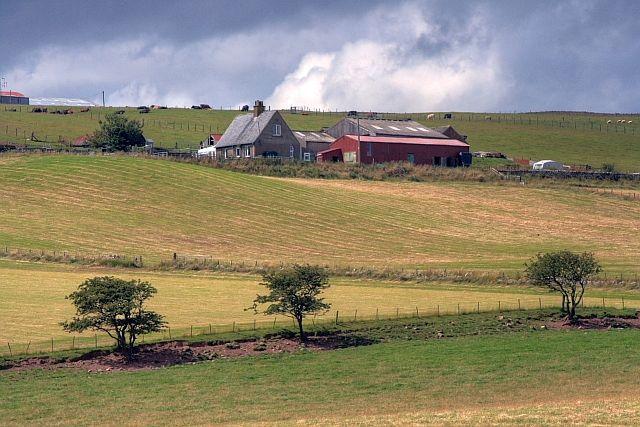Across The Fields To Lamberton