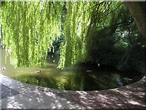 SE3219 : Thornes Park lake by Mike Kirby