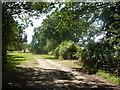 TL9259 : Footpath near woodland corner by Andrew Hill