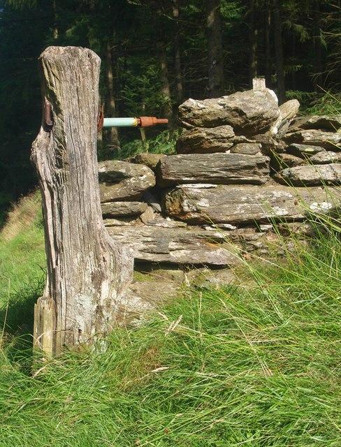 Postyn giat garw / A rustic gatepost