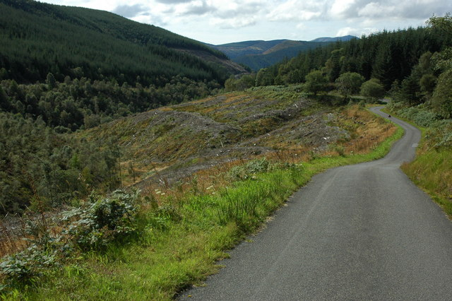 Road in the Dyfi Forest